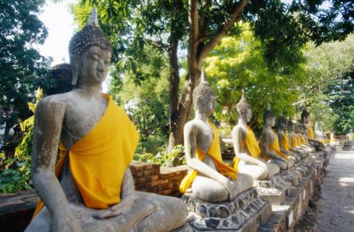 Le Bouddhisme zen – La Voie du milieu